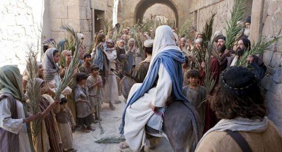 في موكب النصرة إلى اورشليم
