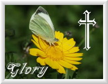 English Hymns - Glory