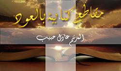 Adel Habib - Makate