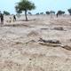 هجوم آخر لبوكو حرام في نيجيريا يخلّف 81 قتيلاً