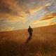 الشكر خطوات نحو السعادة (5) الشكر والأبحاث