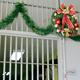 سجين سابق يحث المسيحيين على تذكر المسجونين في عيد الميلاد