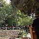 مجلس الكنائس الانجيلية في الاراضي المقدسة يحتفل بالقيامة في بستان القبر