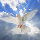رسائل رعوية (3) إله السلام