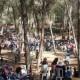 تغيير مكان انعقاد الاجتماع في حرش لوبية الى كريات يام بسبب حالة الطقس الماطرة