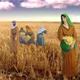 كتاب راعوث - عائلة نُعمي