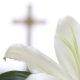 مكانة المرأة عند السيد المسيح– أوّلًـا